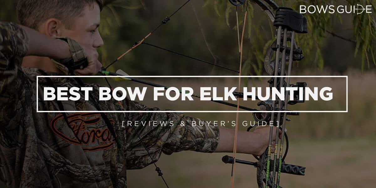 Best Bow for Elk Hunting
