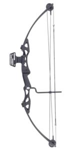 Siege SAS 55 lb 29'' Compound Bow w 5-Spot Paper Target