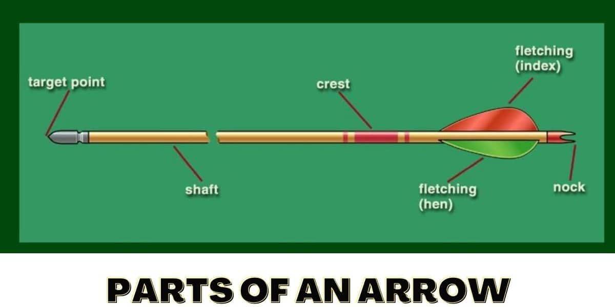 Parts of an Arrow